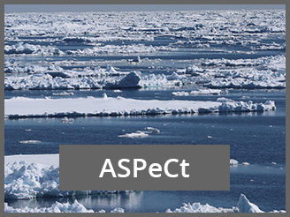 ASPeCt Project BEPSII D.Lannusel