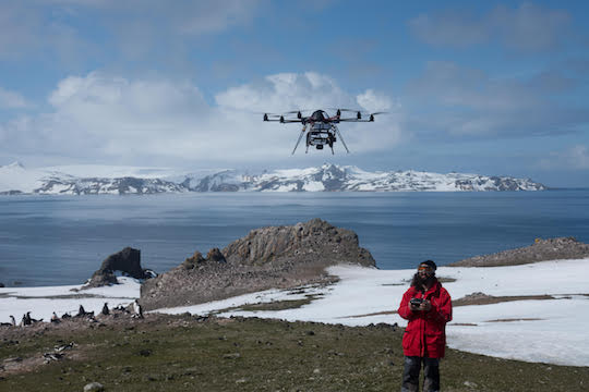 1UAV over Gentoo penguin colony