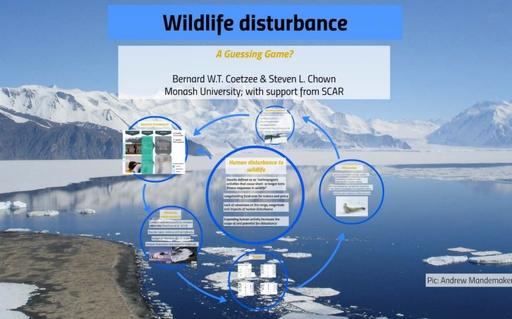 Wildlife Disturbance: A Guessing Game? - Bernard Coetzee