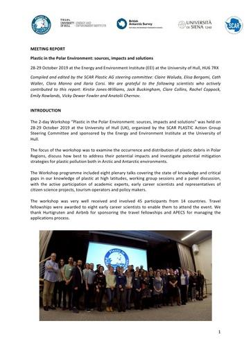 Plastic in the Polar Environment Workshop Report, October 2019