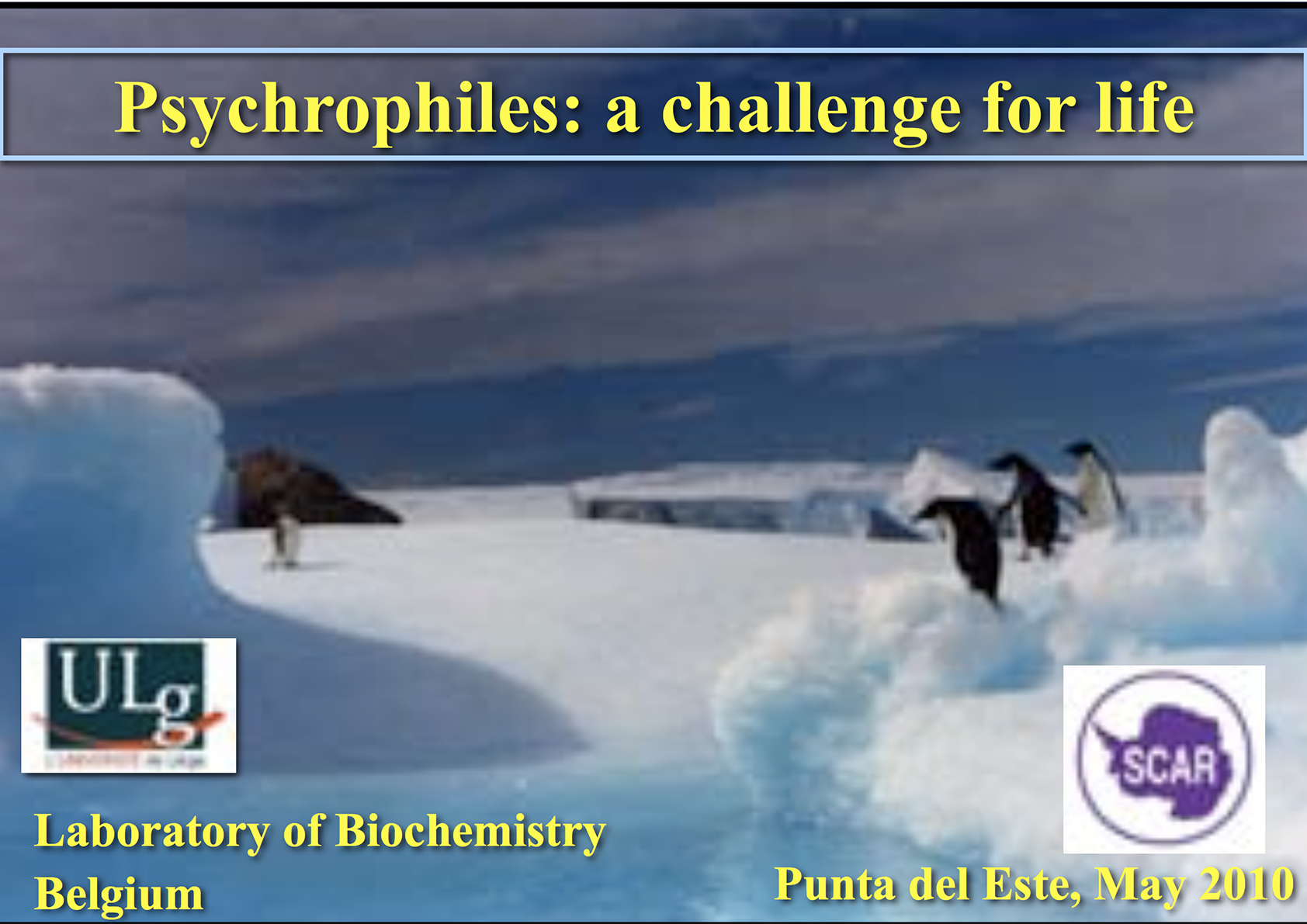 ATT004 to IP003: The SCAR Lecture Psychrophiles: A Challenge for Life (Lecture Slides) (Attachment)